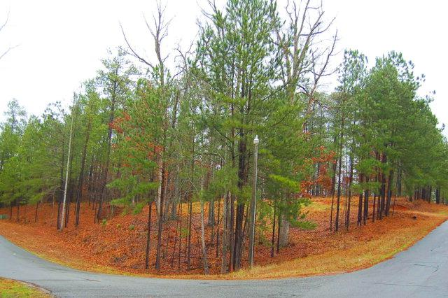 1530 Pullman Lane, Greensboro, GA 30642 (MLS #32602) :: Lane Realty