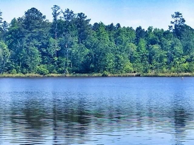 LT 654 Parham Rd, Milledgeville, GA 31061 (MLS #35040) :: Lane Realty