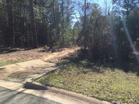 240 Lodestone Drive, Milledgeville, GA 31061 (MLS #35218) :: Lane Realty