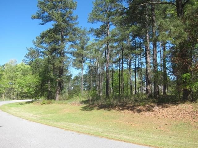 1270 Fairway Ridge Rd, Greensboro, GA 30642 (MLS #35555) :: Lane Realty