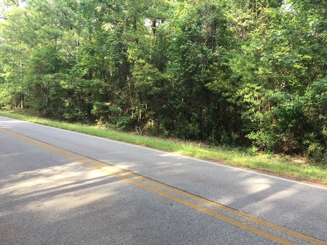 185 Browns Crossing, Milledgeville, GA 31061 (MLS #36414) :: Lane Realty