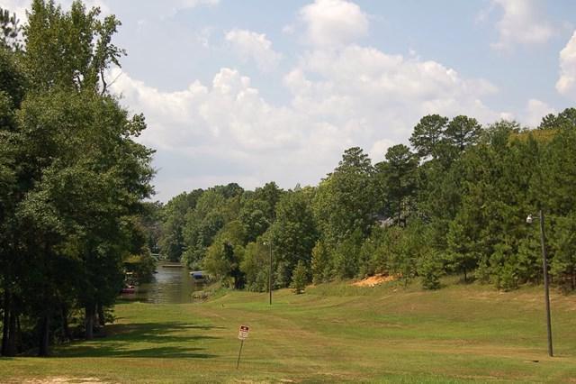 1460 Pullman Lane, Greensboro, GA 30642 (MLS #36533) :: Lane Realty
