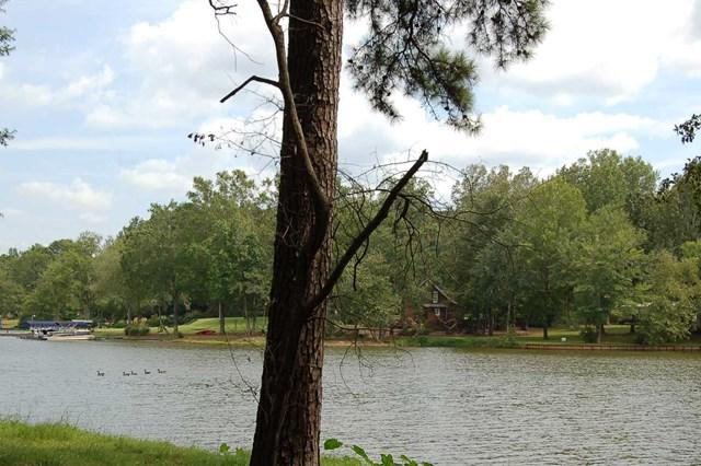 Lot 2 Lakeview Drive, Eatonton, GA 31024 (MLS #36547) :: Lane Realty