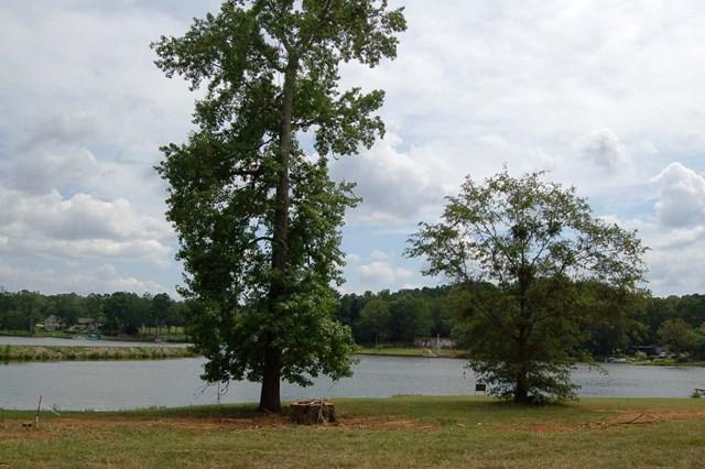 Lot 11 Lakeview Drive, Eatonton, GA 31024 (MLS #36550) :: Lane Realty