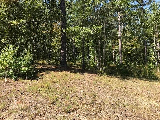 Lot 1&2 Sugar Woods Drive, Buckhead, GA 30625 (MLS #36757) :: Lane Realty