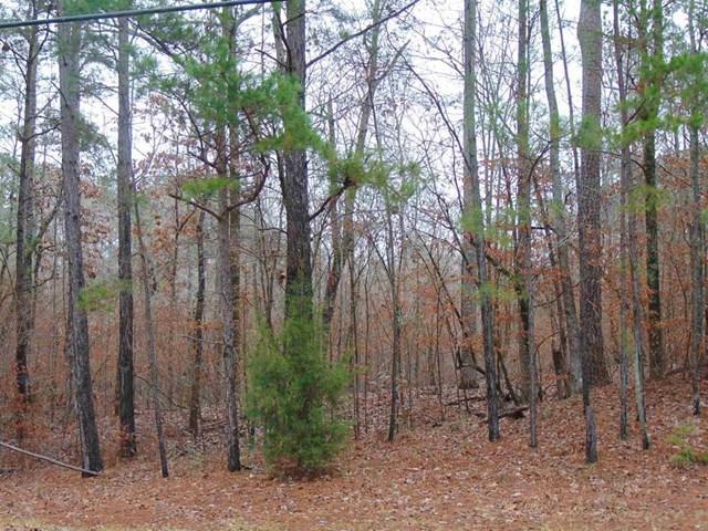 Lot 20 Arrowhead Trail, Eatonton, GA 31024 (MLS #37080) :: Lane Realty