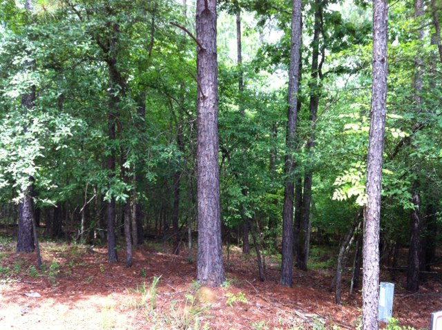Lot 115 Pine Knoll Court, Eatonton, GA 31024 (MLS #37218) :: Lane Realty