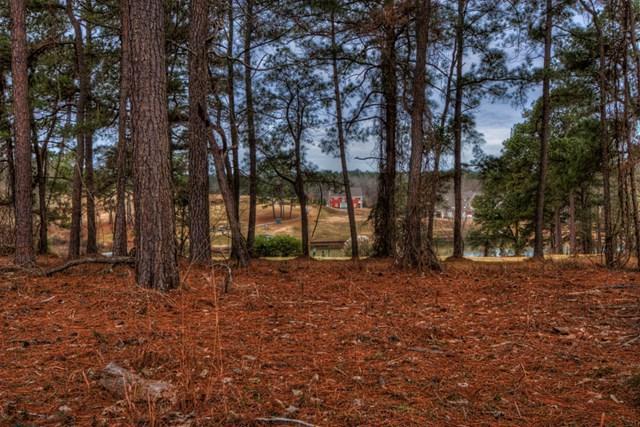 Lot 25 Yacht Club Road, Milledgeville, GA 31061 (MLS #37253) :: Lane Realty