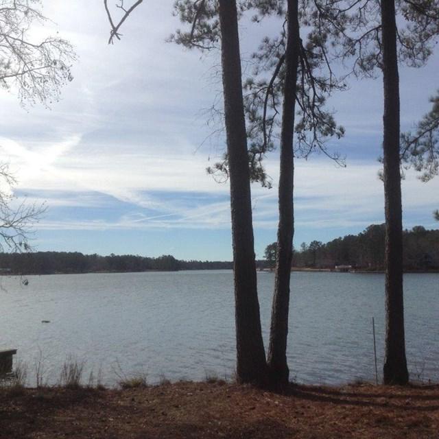 128 Island Dr., Milledgeville, GA 31061 (MLS #37312) :: Lane Realty