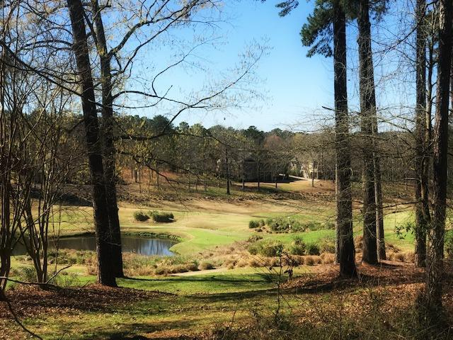 1010 Emerald View Drive, Greensboro, GA 30642 (MLS #37468) :: Lane Realty