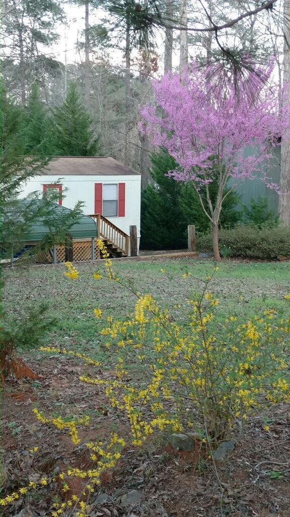 228 Merry Drive, Milledgeville, GA 31087 (MLS #37507) :: Lane Realty