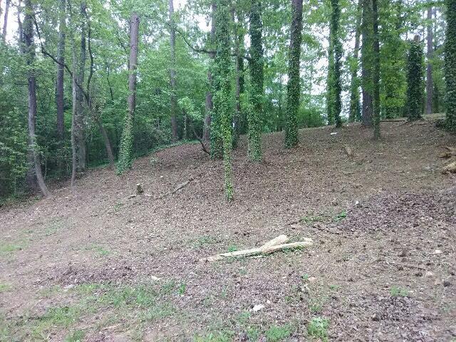1851 Redwood Drive, Macon, GA 31211 (MLS #37812) :: Lane Realty