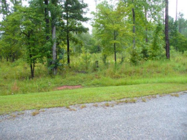 LT7/357 Parham Road, Milledgeville, GA 31061 (MLS #38505) :: Lane Realty