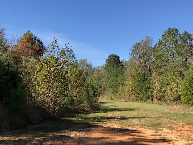 100 Southern Walk Drive, Milledgeville, GA 31061 (MLS #38857) :: Lane Realty