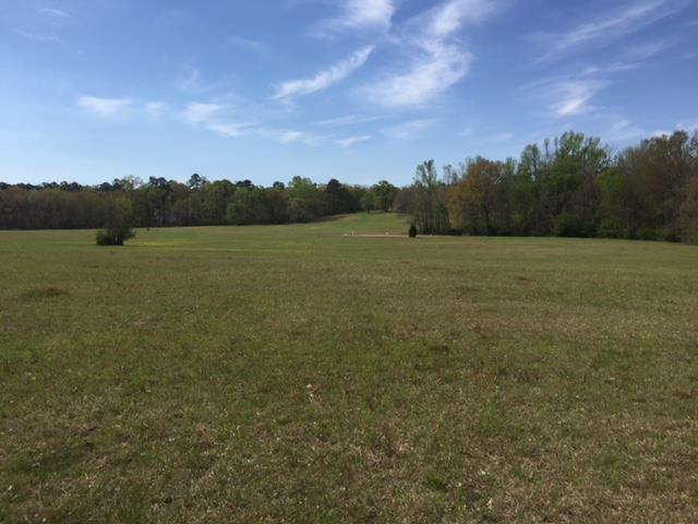 801 Nelson Road Se, Milledgeville, GA 31061 (MLS #38899) :: Lane Realty