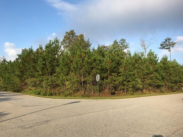 262 Quail Ridge Court Ne, Milledgeville, GA 31061 (MLS #39415) :: Lane Realty