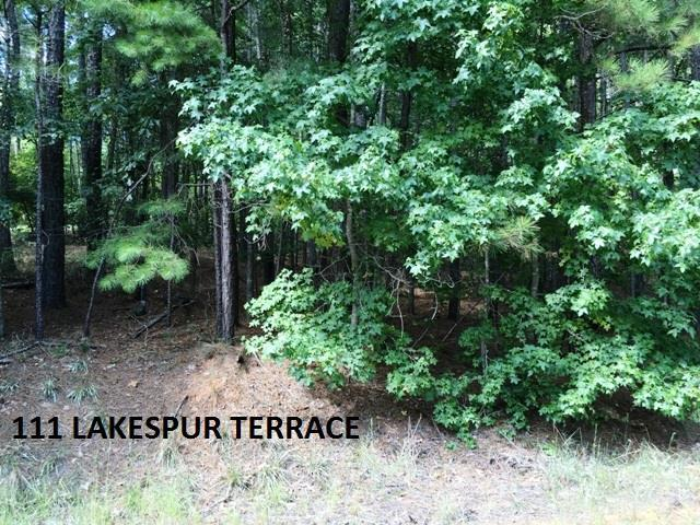 111 Larkspur Terrace, Sparta, GA 31087 (MLS #39838) :: Lane Realty
