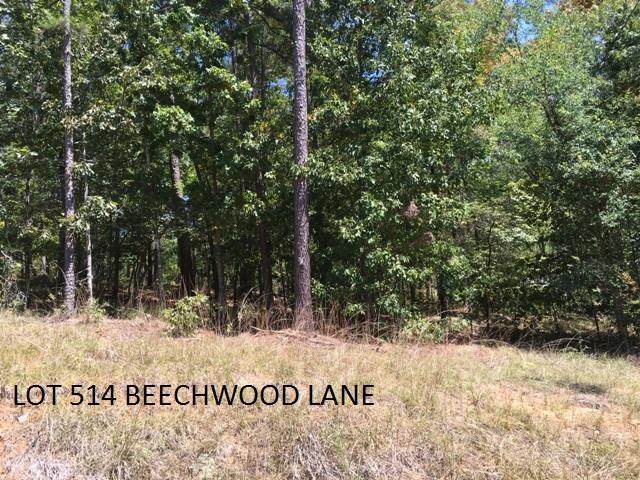 Lot 518 Beechwood Lane, Sparta, GA 31087 (MLS #39845) :: Lane Realty