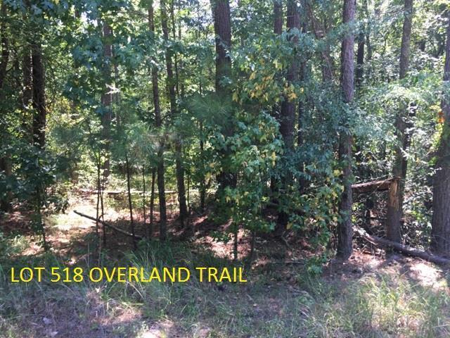 Lot 514 Overland Trail, Sparta, GA 31087 (MLS #39846) :: Lane Realty