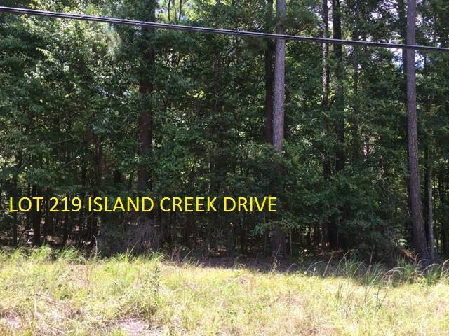 Lot 219 Island Creek Drive, Sparta, GA 31087 (MLS #39847) :: Lane Realty