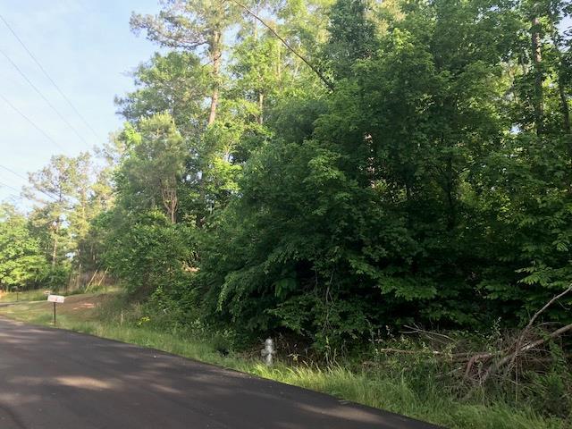 Lot 181 Bluegill Road, Eatonton, GA 31024 (MLS #40010) :: Lane Realty