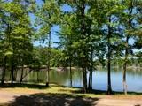 2580 Cherokee Dr., Greensboro, GA 30642 (MLS #40287) :: Lane Realty