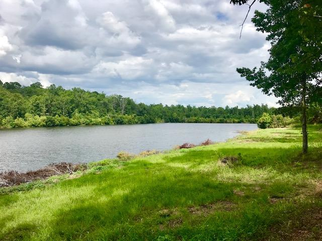 159 Pearl Drive, Milledgeville, GA 31061 (MLS #40409) :: Lane Realty