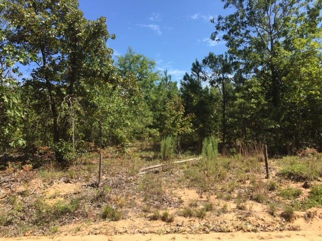 Lot 13 Barnes Road, Sparta, GA 31087 (MLS #40556) :: Lane Realty
