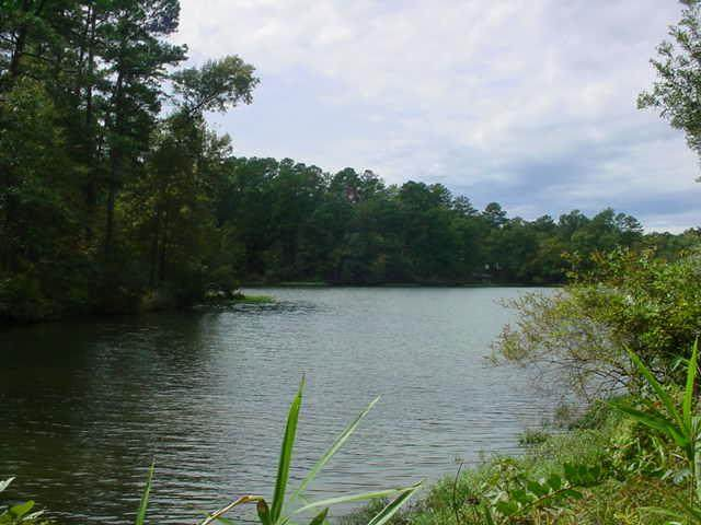 Lot 54 Sheffield Terrace, Sparta, GA 31087 (MLS #41930) :: Lane Realty