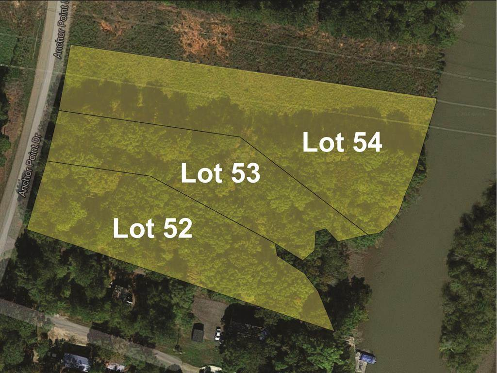 Lot 54 Anchor Point Road - Photo 1