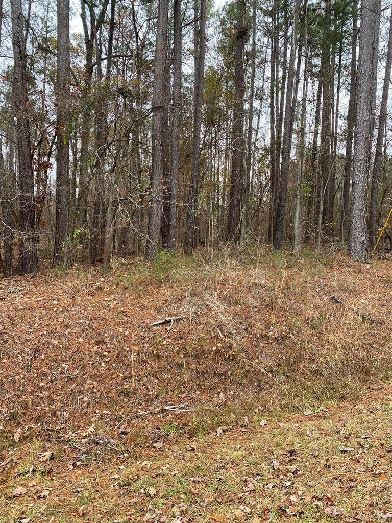 Lot 312 Black Oak Dr. - Photo 1