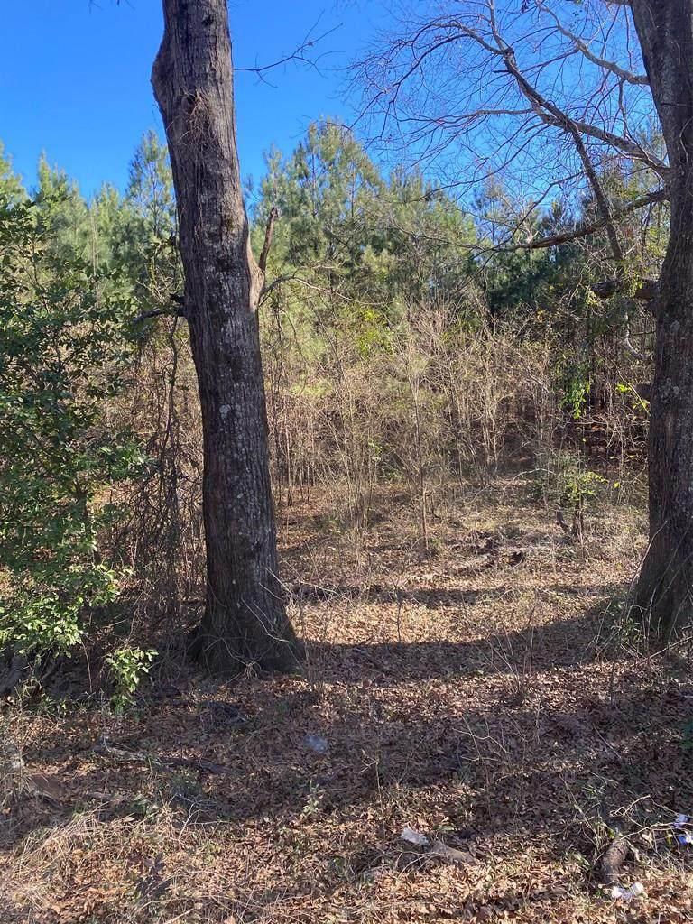 Tract E County Line Rd. - Photo 1