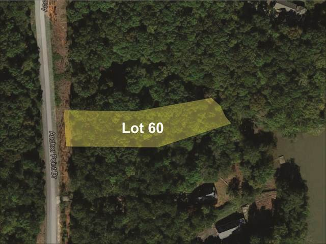 Lot 60 Anchor Point Road - Photo 1