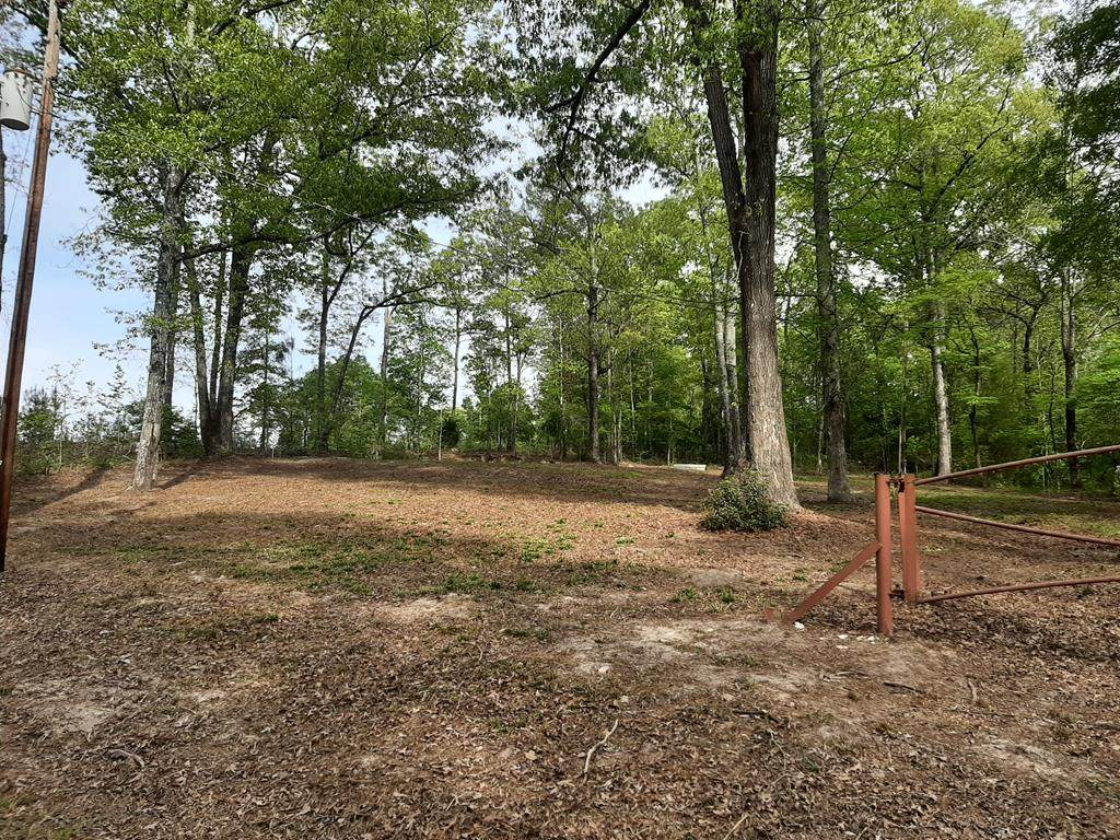 N/A J Youngblood Rd - Photo 1