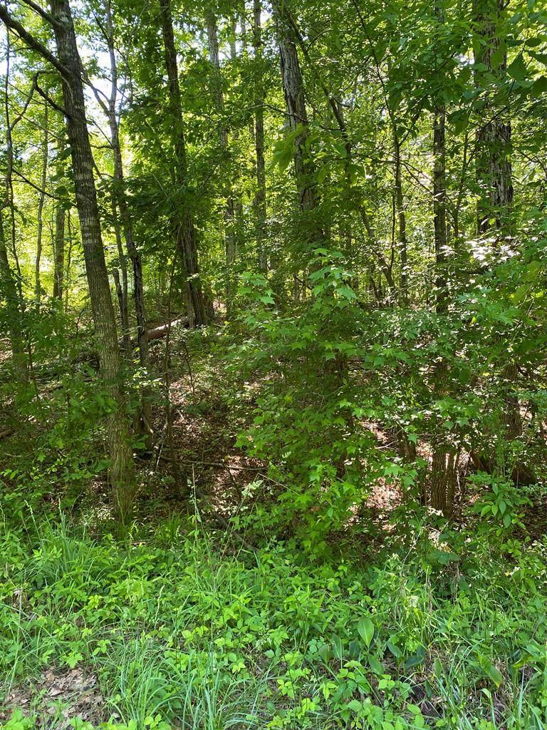 Lot 86 Bear Creek Rd. - Photo 1