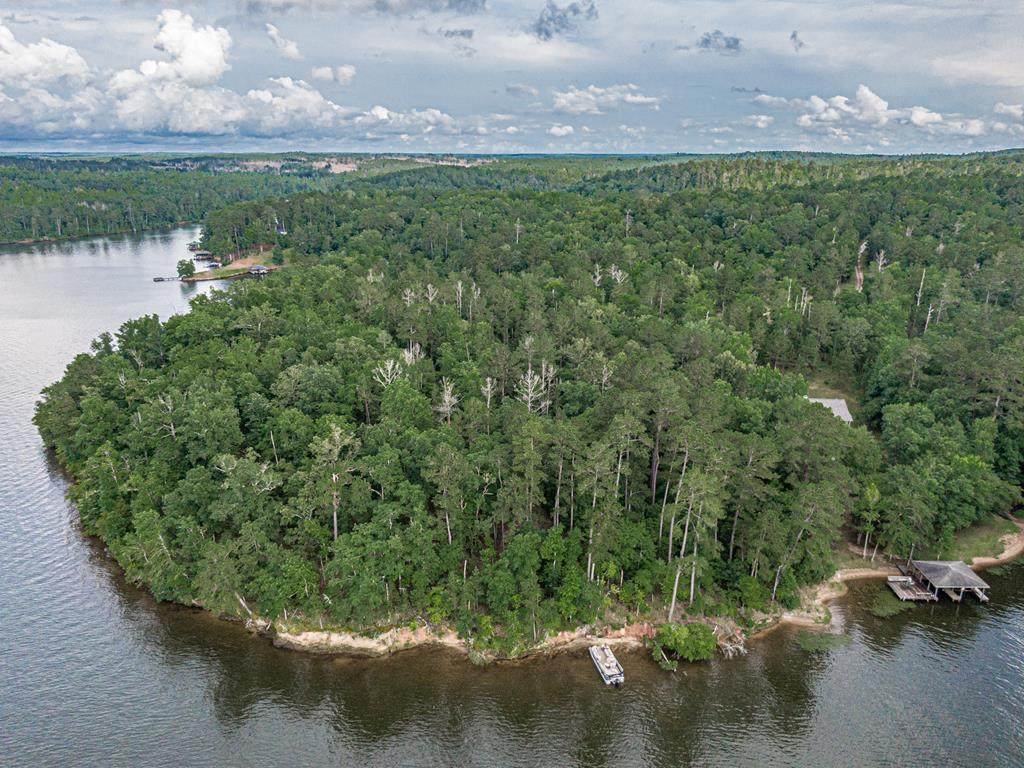0 Lake Sinclair - Photo 1