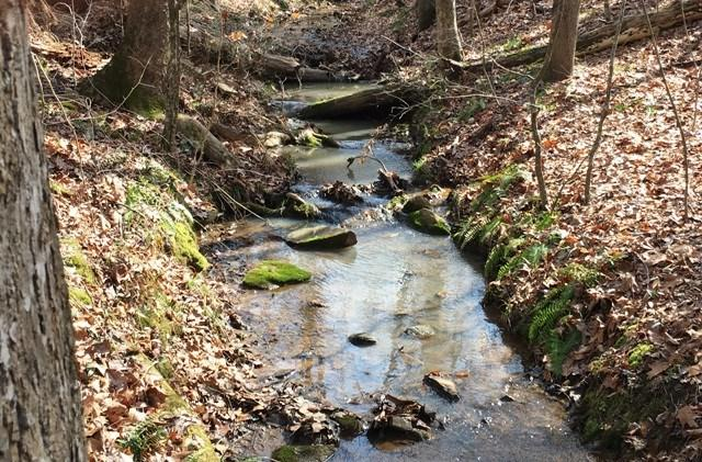 156 Hidden Hills Dr., Milledgeville, GA 31061 (MLS #37339) :: Lane Realty
