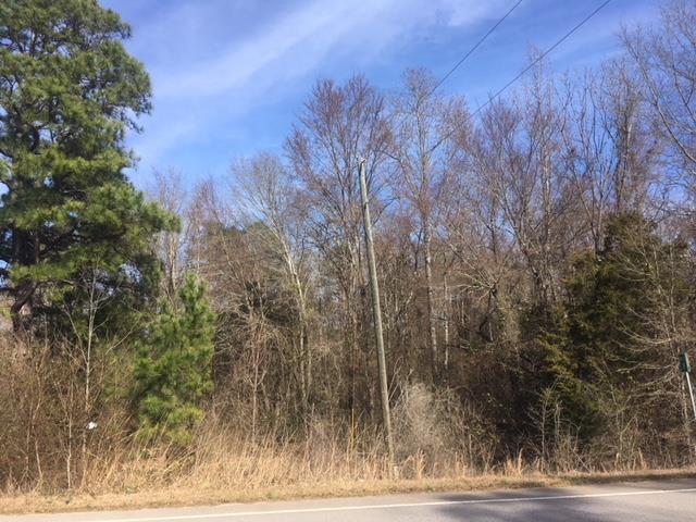 Lot 10 Milledgeville Road - Photo 1