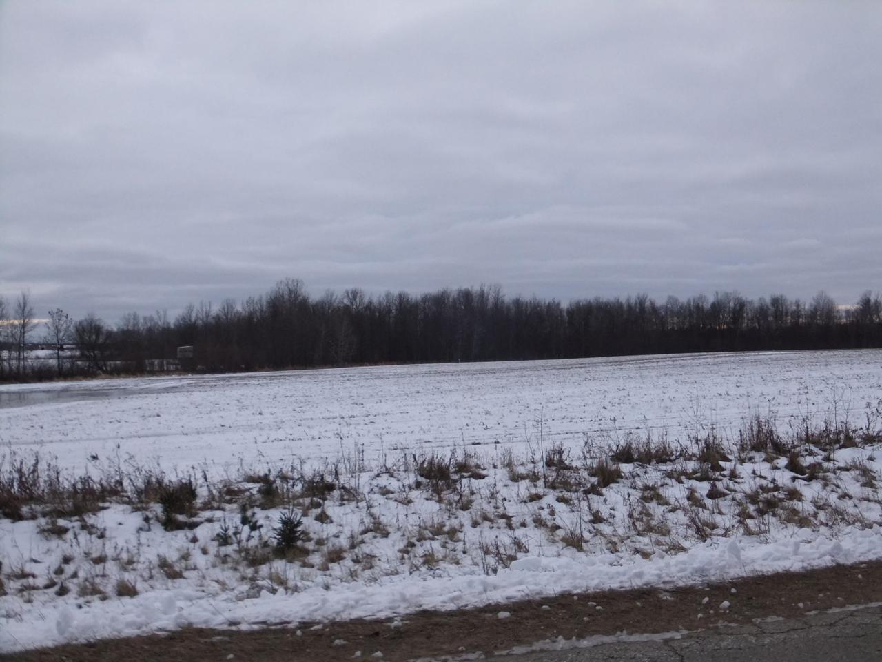 9.8 Acres 3.5 Rd - Photo 1