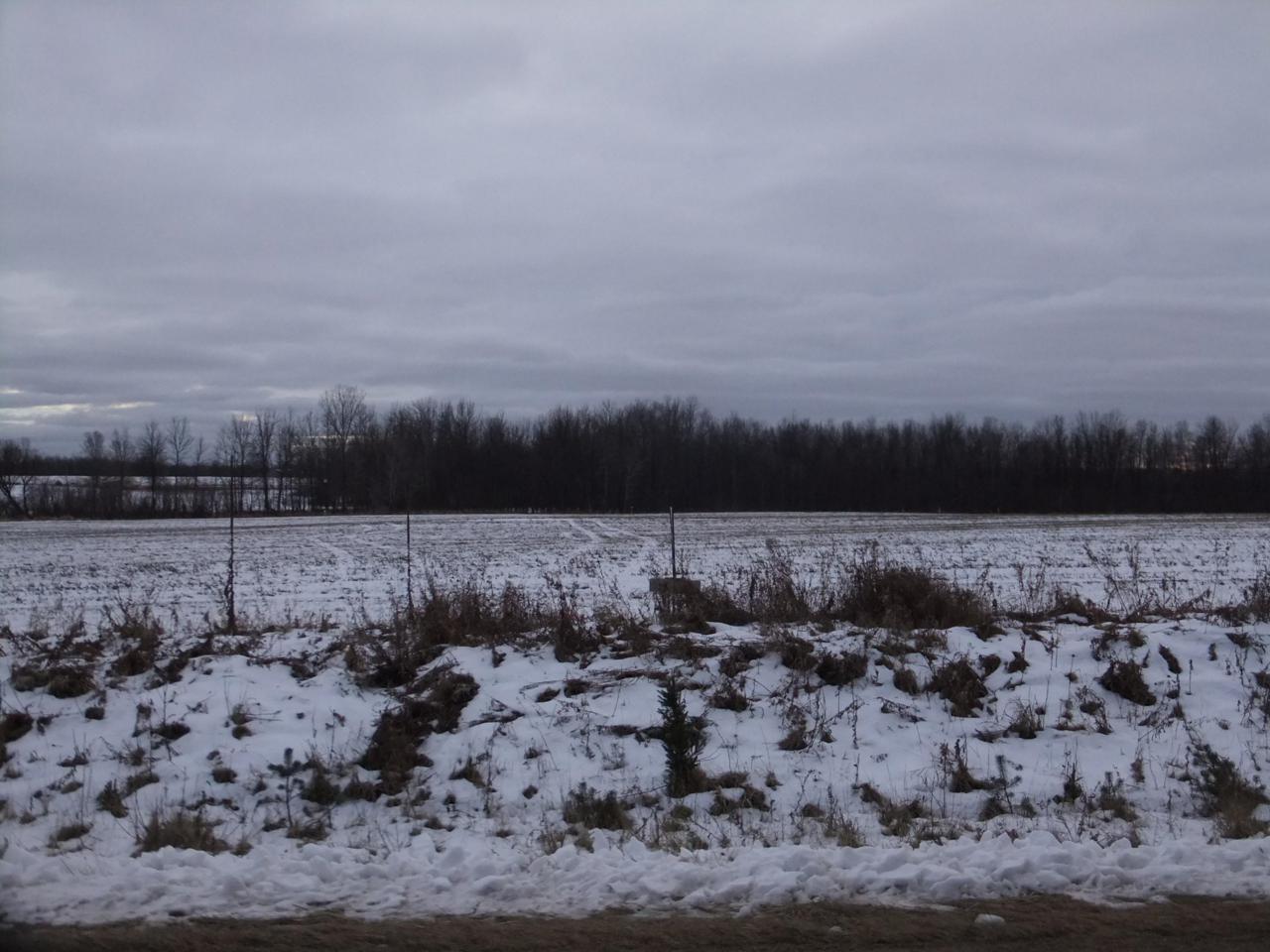 7.82 Acres 3.5 Rd - Photo 1