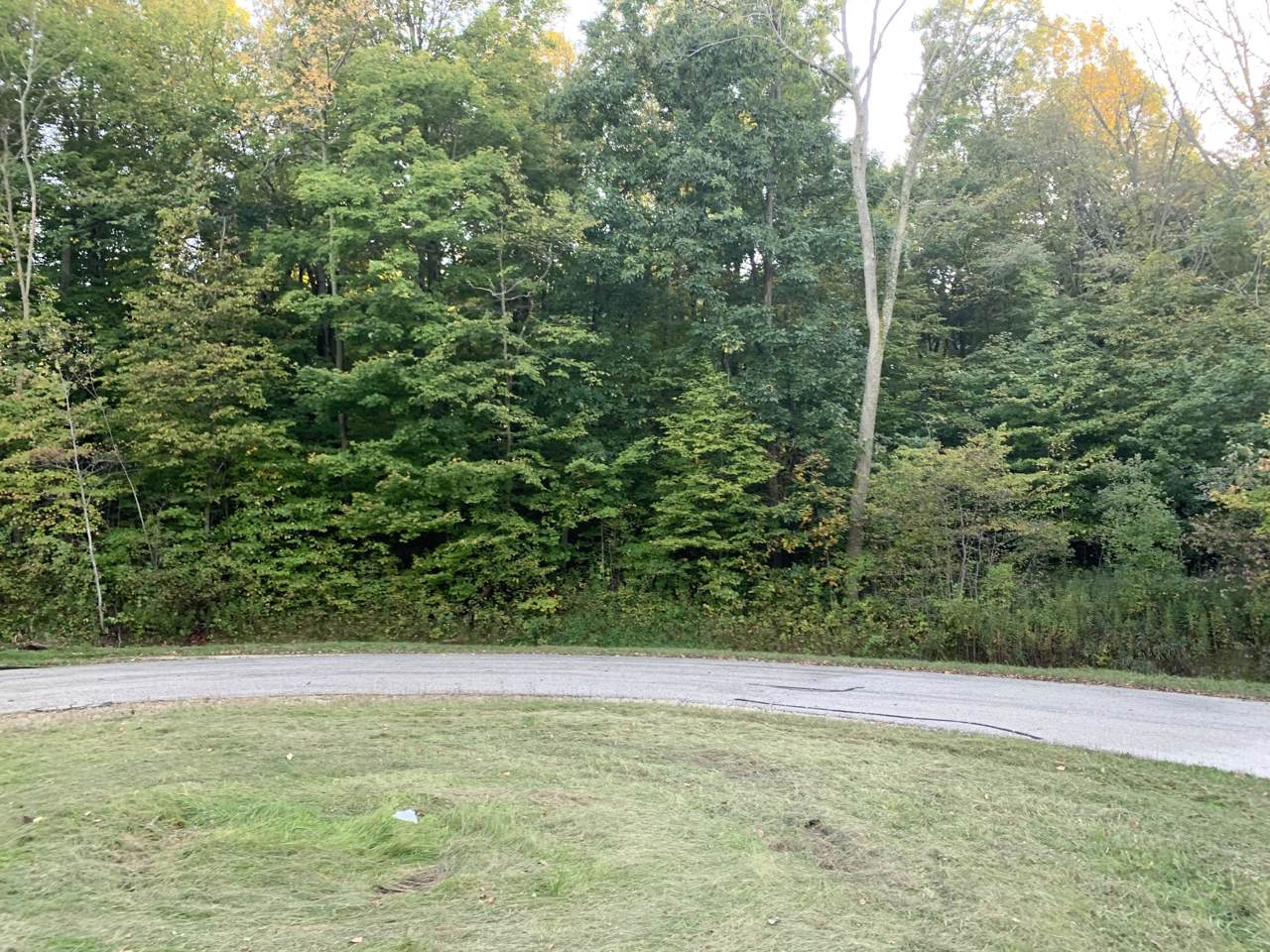 Lot 20 Hickory Dr - Photo 1