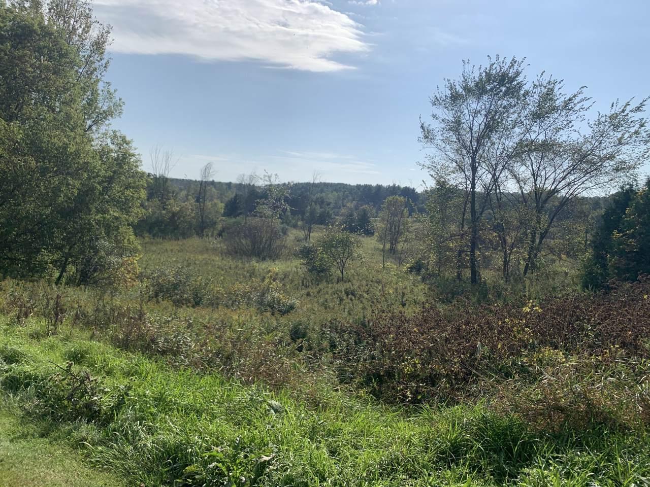 Lt41 Ridge Creek Rd - Photo 1