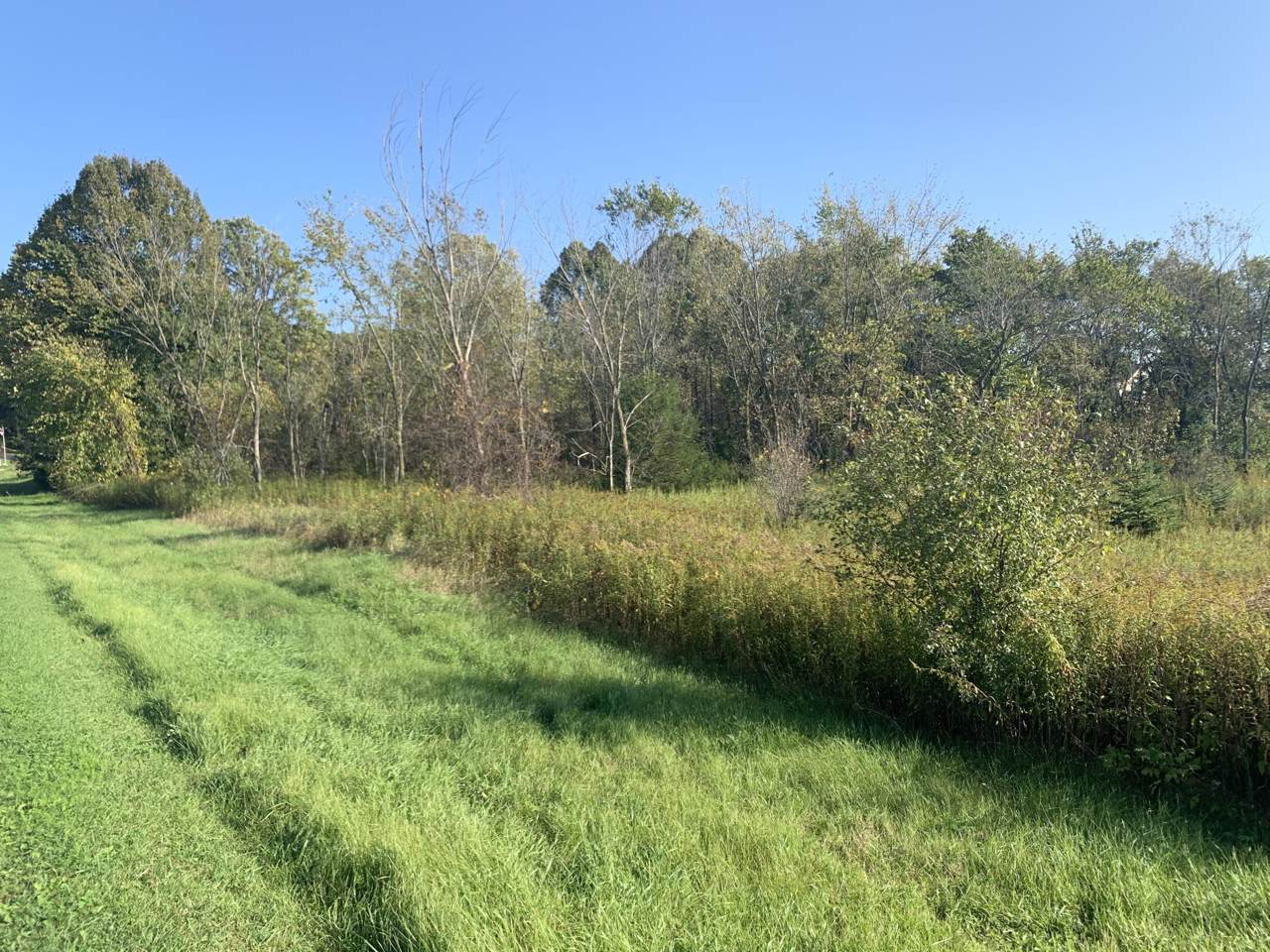 Lot 56 Ridge Creek Ct - Photo 1