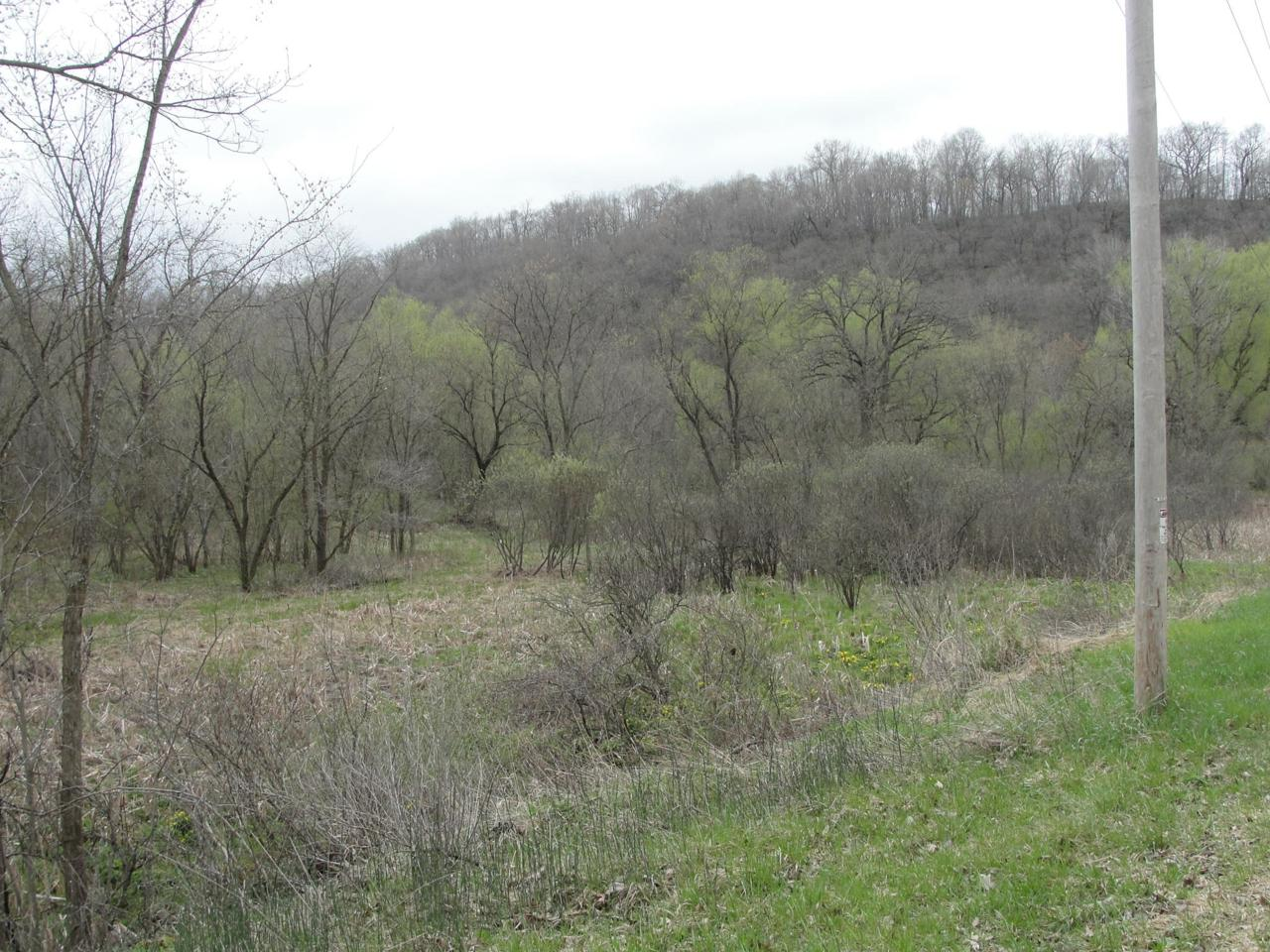 00 Hornby Hollow Rd - Photo 1