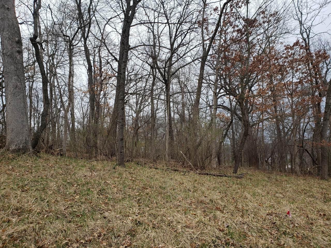 Lt2 Oak Rd - Photo 1