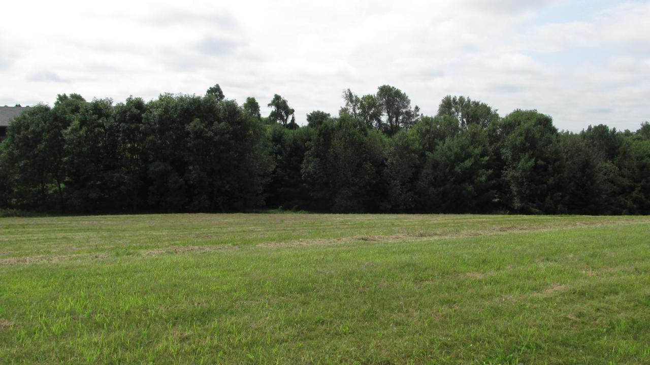 LOT 40 Crossing Meadows - Photo 1