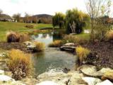LOT 3 Bell Farm Green - Photo 5