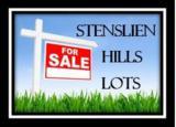 Lot 61 Stenslien Hills - Photo 4