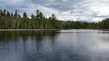Lt 23 Wolf Lake Rd - Photo 6