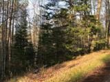16553 Nature Trail Rd - Photo 2